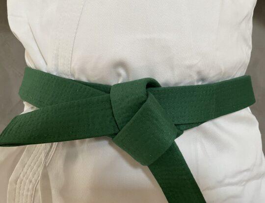 LSS Delaware-Lean Six Sigma Green Belt